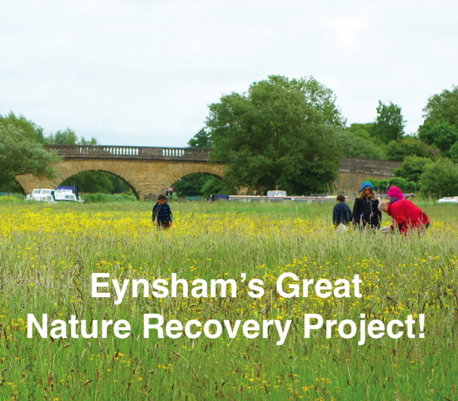 Eysham's Great Nature Recovery Project