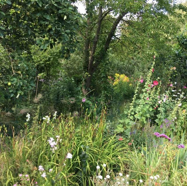 Heather's gardencrop
