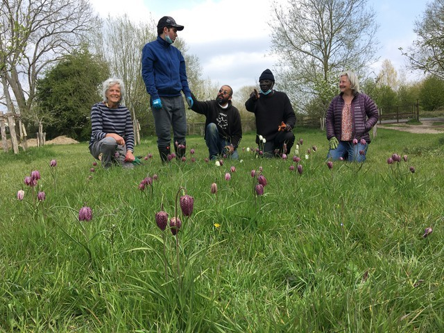 Care-farming participants and Eynsham green enthusiasts enjoying the results of autumn bulb planting