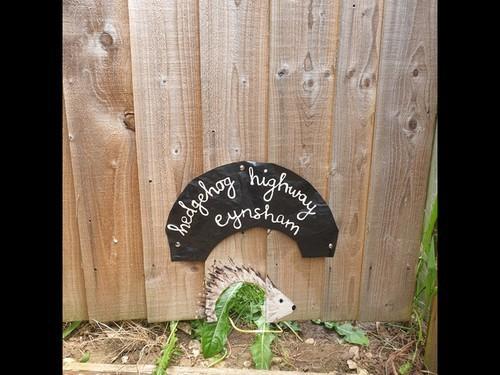 Hedgehog_highway_sign
